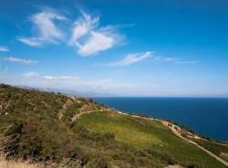 Продажа 1 Га земли у моря, Крым ЮБК | Недвижимость Крым, ЮБК, Ялта