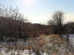 ea_20170113_110822 | Недвижимость Крым, ЮБК, Ялта