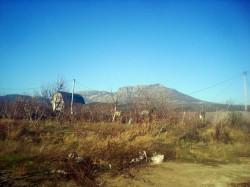 2 участка по 10 соток Алушта. р-н Оливковая Роща | Недвижимость Крым, ЮБК, Ялта