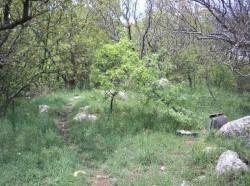 Продажа: участок в Алупке, 250 м. до моря. ЮБК - Крым