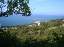 Срочно продам Участок на ЮБК в Парковое (под Ялтой | Недвижимость Крым, ЮБК, Ялта