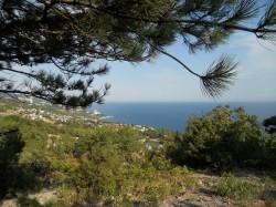 ea_DSCN2553_JPG | Недвижимость Крым, ЮБК, Ялта