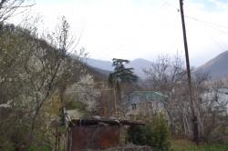 ea_DSC_0078_JPG | Недвижимость Крым, ЮБК, Ялта
