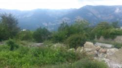 ea_DSC_0195_JPG | Недвижимость Крым, ЮБК, Ялта