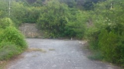 ea_DSC_0198_JPG | Недвижимость Крым, ЮБК, Ялта