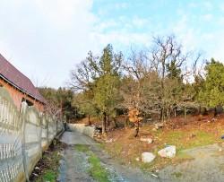 ea_DSC_1356_JPG_480835961 | Недвижимость Крым, ЮБК, Ялта