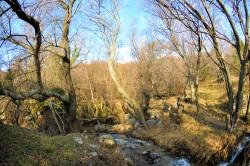 ea_DSC_1594_JPG | Недвижимость Крым, ЮБК, Ялта