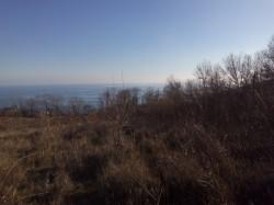 ea_IMG_20151213_141010 | Недвижимость Крым, ЮБК, Ялта
