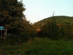 ea_IMG_3025_JPG | Недвижимость Крым, ЮБК, Ялта