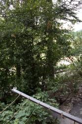 Придомовая территория, можно строить магазин или о | Недвижимость Крым, ЮБК, Ялта