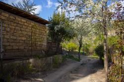 Гараж и сад во дворе | Недвижимость Крым, ЮБК, Ялта