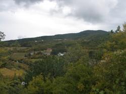 ea_P1010922_JPG | Недвижимость Крым, ЮБК, Ялта