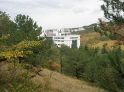 ea_P1010930_JPG | Недвижимость Крым, ЮБК, Ялта