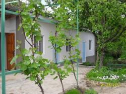 Аренда: 2-х комнатный коттедж в Старом Крыму. ЮБК - Крым