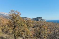 ea________________________________3_JPG | Недвижимость Крым, ЮБК, Ялта