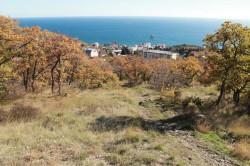 ea________________________________4_JPG | Недвижимость Крым, ЮБК, Ялта