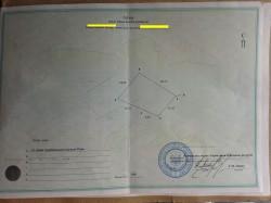 ea_alupka_4_sotki_03_7 | Недвижимость Крым, ЮБК, Ялта