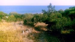 ea_alushta_2ga_07 | Недвижимость Крым, ЮБК, Ялта