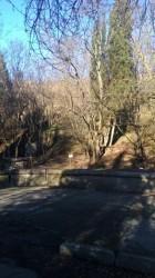 ea_alushta_3_uchastka_7_7_8_12 | Недвижимость Крым, ЮБК, Ялта