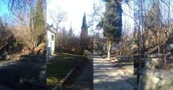 ea_alushta_3_uchastka_7_7_8_13 | Недвижимость Крым, ЮБК, Ялта