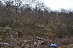 ea_alushta_8_sotok_lzhs_5_JPG | Недвижимость Крым, ЮБК, Ялта