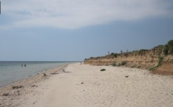 Продажа: участок 10 Га в с. Витино, 1500 м до пляжа, сельхоз. ЮБК - Крым