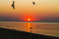 Участки в Береговом, Бахчисарай | Недвижимость Крым, ЮБК, Ялта