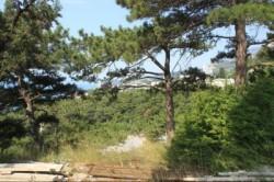 ea_big_3465_10 | Недвижимость Крым, ЮБК, Ялта