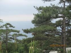 ea_big_3495 | Недвижимость Крым, ЮБК, Ялта