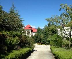 Продажа дома в Ливадии 200 м до моря | Недвижимость Крым, ЮБК, Ялта