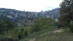 ea_image.jpeg | Недвижимость Крым, ЮБК, Ялта