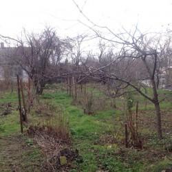 ea_kiparisnoe_uchastok_12_sotok_2 | Недвижимость Крым, ЮБК, Ялта