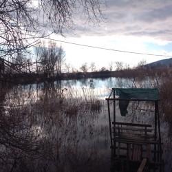 ea_kiparisnoe_uchastok_12_sotok_6 | Недвижимость Крым, ЮБК, Ялта