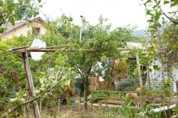 Продажа: часть дома на участке 6 соток с садом, вид на море. ЮБК - Крым
