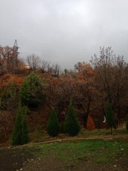 Участок в Оползневом 6 соток №1 | Недвижимость Крым, ЮБК, Ялта