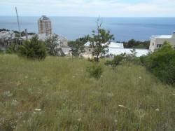 Продажа: участок 1,08 Га в 300 м. от моря, Парковое. ЮБК - Крым