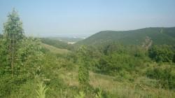 3 участка в Розовом, Алушта | Недвижимость Крым, ЮБК, Ялта