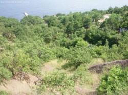 ea_satera_3_3_ga_2 | Недвижимость Крым, ЮБК, Ялта