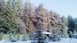 ea_usadba_istra_kryuchkovo_na_krym_04_2016_9 | Недвижимость Крым, ЮБК, Ялта
