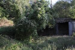 ea_yalta_natashino_8_5_sotok_04_3_JPG | Недвижимость Крым, ЮБК, Ялта