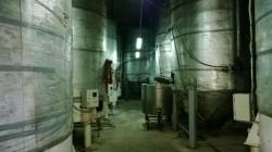 Продажа: пивзавод в Ялте, прибыльный готовый бизнес недорого. ЮБК - Крым